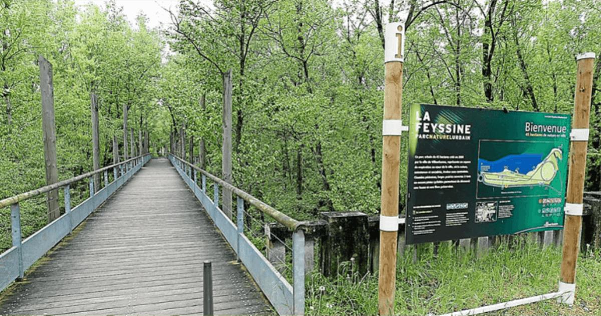 Parc de la Feyssine Lyon toiletteur